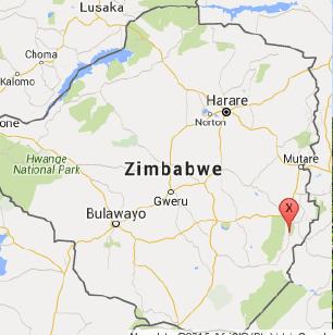 Zimbabwe Smaldeel Estate (12 oz.)