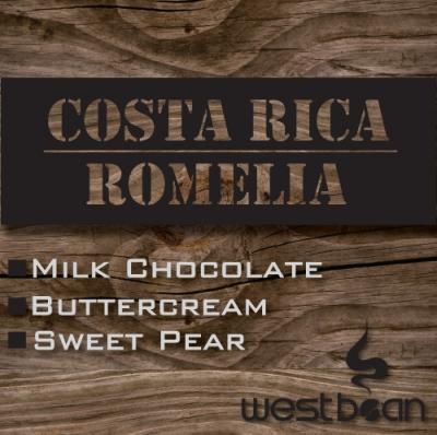 Costa Rican Romelia (16 oz.)