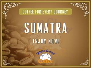Sumatra (12 oz.)